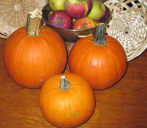 Pumpkinspantry